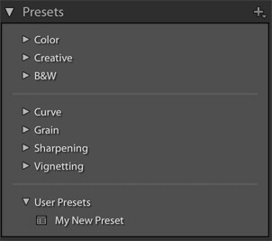 Lightroom course presets