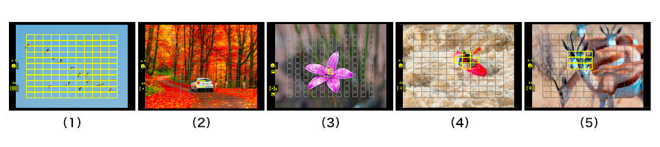 Understanding Camera focus modes. Focus Areas