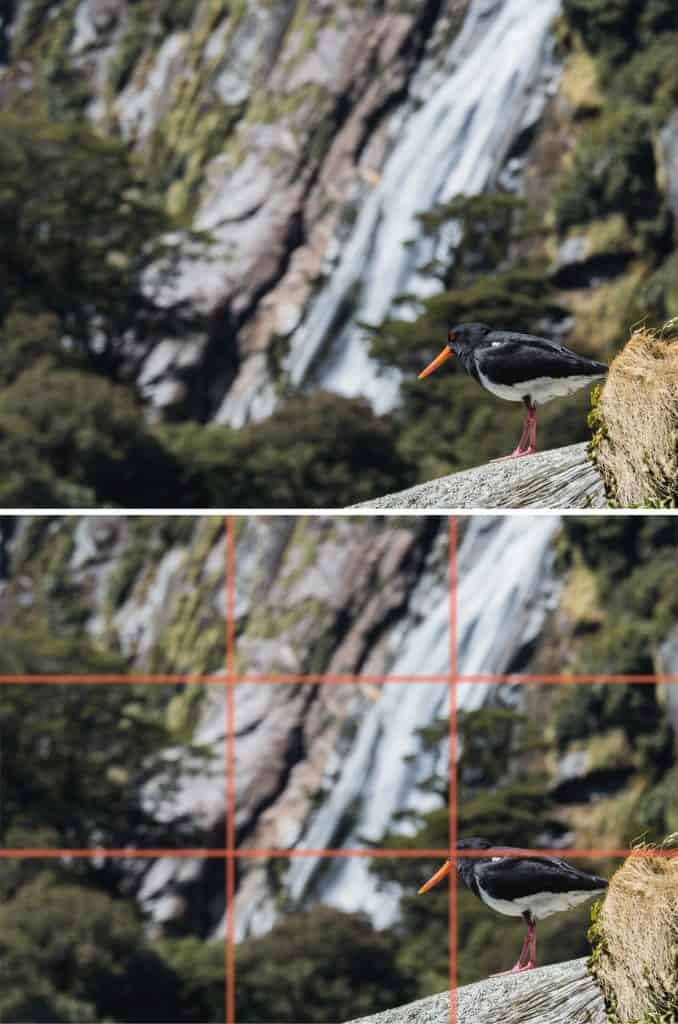 Composition in photography. Rule of thirds