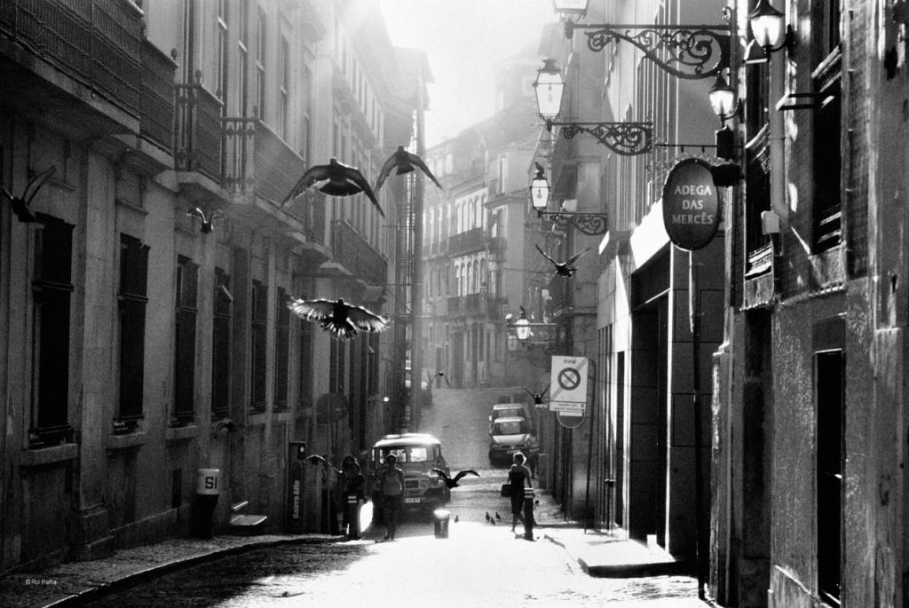 Rui Palha | 10 Amazing Street Photographers You Should Know