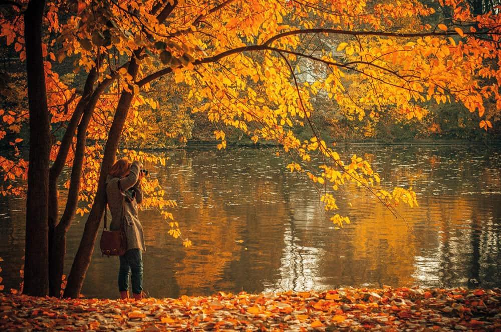lake and autumn foliage