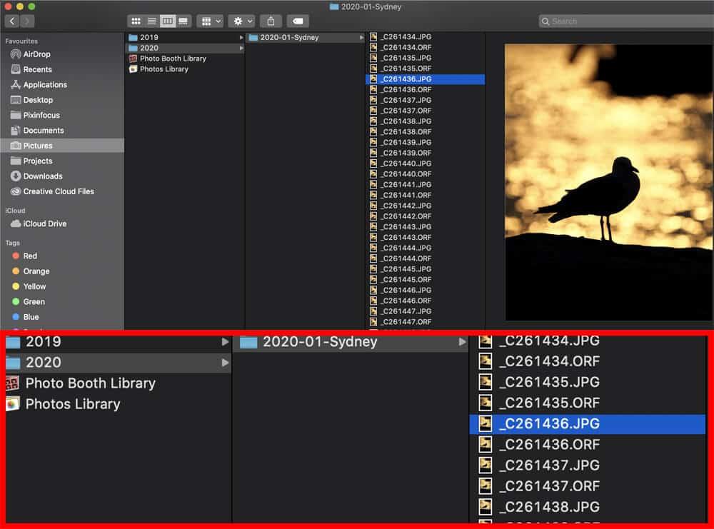 organizing digital pictures folder structure