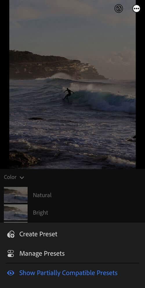 Lightroom mobile manage presets