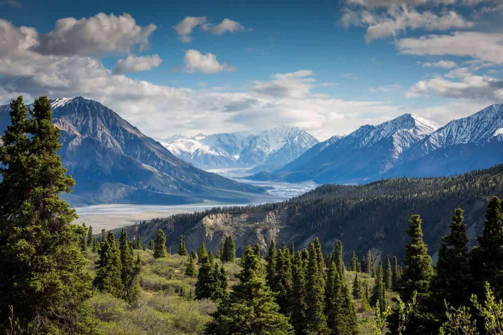 Best Camera for Landscape Photography