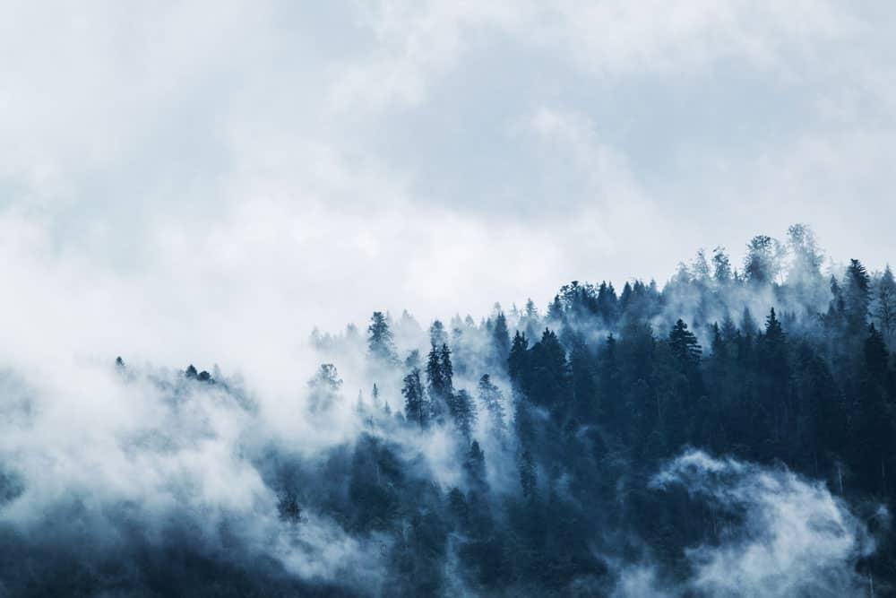 Landscape Photography Quotes