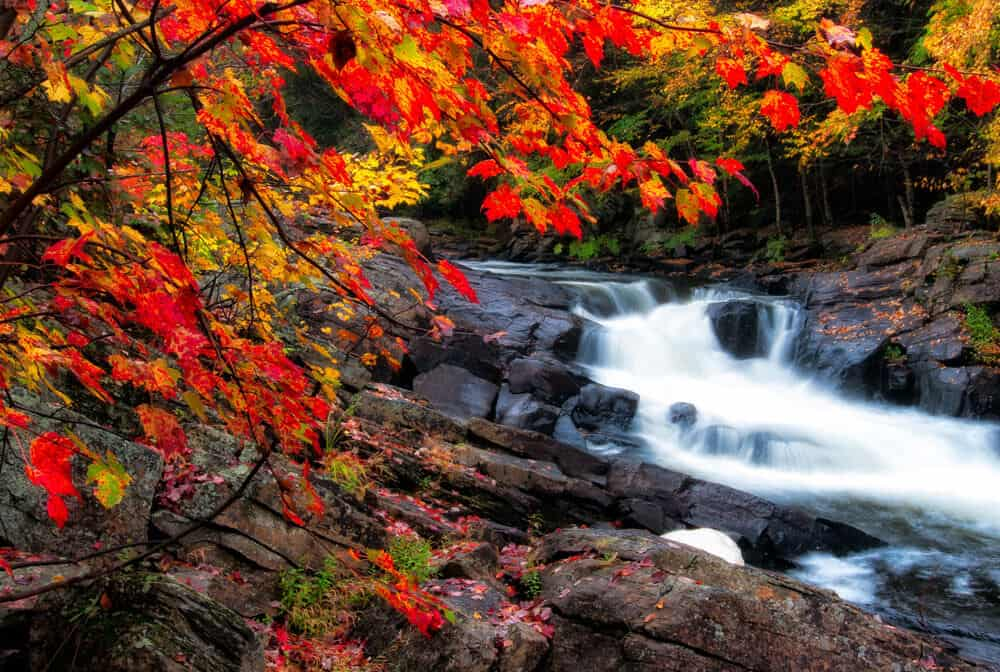 flowing Water Photography
